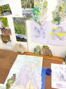 Frances Priest studio, Patterns of Flora mapping seven Raasay habitats