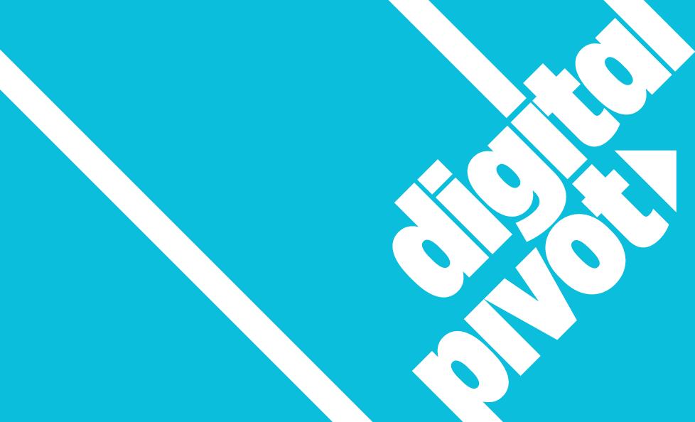 Digital Pivot Support image