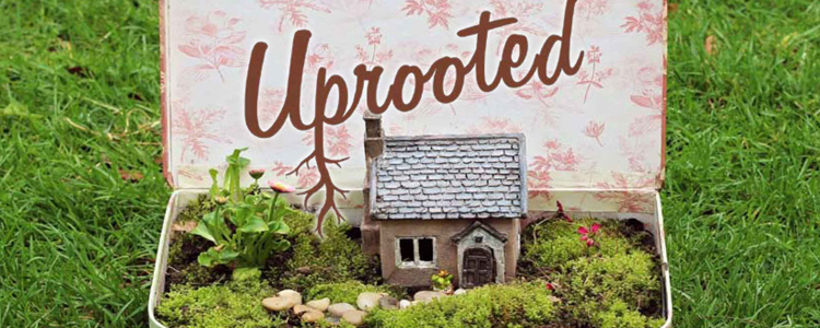 Eco Drama's Uprooted Project