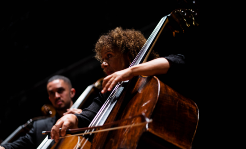 A musician plays the double bass