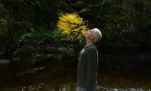 Leaning into the Wind – Andy Goldsworthy image