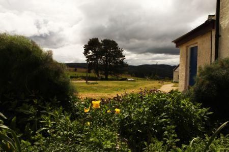 The community garden at Moniack Mhor (photo: Nancy MacDonald)